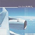 Nite Flyte 30,000 Ft