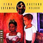 Caetano Veloso Fina Estampa Ao Vivo (Live 1995)