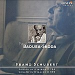 Paul Badura-Skoda Schubert, F.: Piano Sonatas Nos. 14 And 20 (Badura-Skoda)