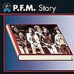 PFM P.F.M. Story