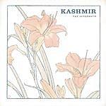 Kashmir The Aftermath (2-Track Single)