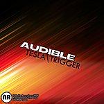 Audible Tesla / Trigger