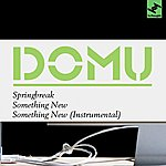 Domu Springbreak/Something New (3-Track Maxi-Single)