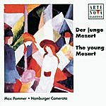 Max Pommer The Young Mozart