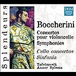 Anner Bylsma DHM Splendeurs: Boccherini: Concertos Violoncelle