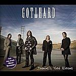 Gotthard Janie's Not Alone/Never Surrender