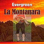 Evergreen La Montanara