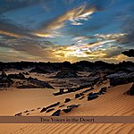 Perry Robinson Two Voices In The Desert