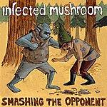 Infected Mushroom Smashing The Opponent