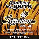 Los Tigrillos Cumbias Con Garra Vol. IV *