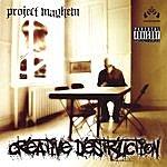 Project Mayhem Creative Destruction
