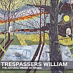 Trespassers William The Natural Order Of Things