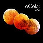 Ocelot One
