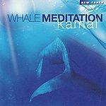 Kamal Whale Meditation