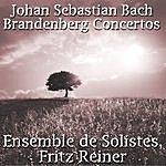 Fritz Reiner Johann Sebastian Bach: Brandenburg Concertos
