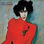 Acoustic Ladyland Skinny Grin