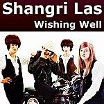 The Shangri-Las Wishing Well
