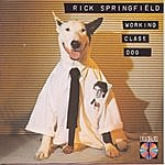 Rick Springfield Working Class Dog