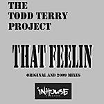 Todd Terry That Feelin