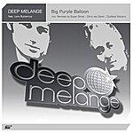 Deep Melange Big Purple Balloon