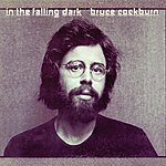 Bruce Cockburn In The Falling Dark (Deluxe Edition)