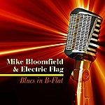Michael Bloomfield Blues In B-Flat