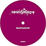 Beatfanatic Wonderful Star EP