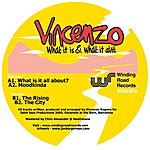 Vincenzo What It Is & What It Aint Ep