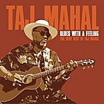 Taj Mahal Blues With A Feeling