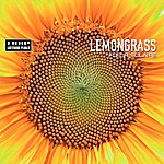 Lemongrass Fleur Solaire