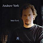 Andrew York Into Dark