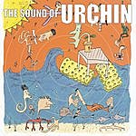 The Sound Of Urchin The Sound Of Urchin