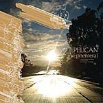 Pelican Ephemeral
