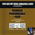 Newsboys You Are My King (Amazing Love) (Premiere Performance Plus Track)