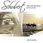 David Levine Schubert Sonatas D959 D960