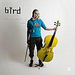 Bird Girl And A Cello