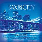 Sam Levine Sax In The City