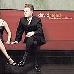 David Mead The Luxury Of Time