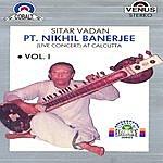Nikhil Banerjee Pt. Nikhil Banerjee (Sitar Vadan) Vol.1