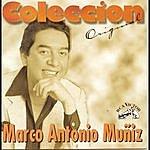 Marco Antonio Muñiz Coleccion Original