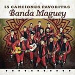 Banda Maguey 15 Canciones Favoritas
