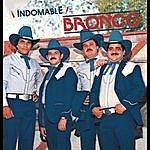 Bronco Indomable