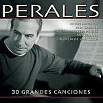 José Luis Perales Perales