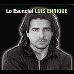 Luis Enrique Lo Esencial
