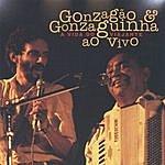Luiz Gonzaga A Vida Do Viajante