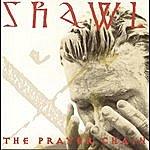 The Prayer Chain Shawl