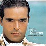 Pablo Montero Que Voy A Hacer Sin Ti