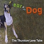 The Thurston Lava Tube The Year Of The Dog