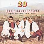 Los Chalchaleros 20 Años De Canto: Grabado En Vivo El Teatro Victoria De Salta, Vol.1