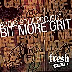 Audio Soul Project Bit More Grit
